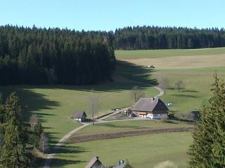 Vacation Apartment in Sankt Georgen im Schwarzwald - 484 sqft, max. 3 people (# 6083), Brigach