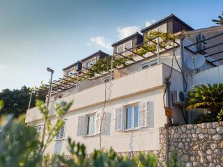 Apartments Dalmatin-Studio w Balcony and Sea View