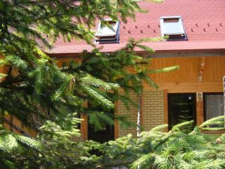 TraveLand Poiana Brasov - Duplex One-Bedroom Apart