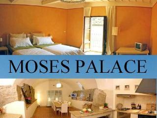 MOSES PALACE