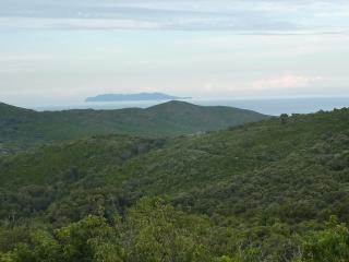 Vue du gite sur maquis et mer, avec ile de Capraia au fond