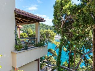Apartment Blue Lagoon-Two Bedroom Apartment with Sea View and Terrace, Dubrovnik