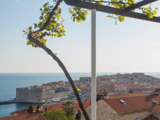 Apartments Dalmatin-One Bedroom Ap. with Terrace