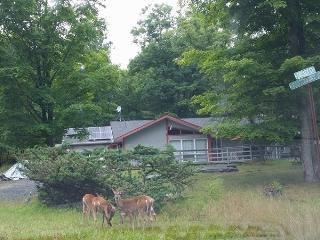 Modern Secluded in ski Resort,HotTub,Netflix,Wifi, Bushkill