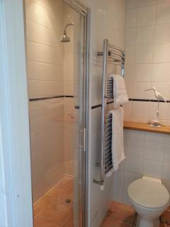Family shower room with large walk-in shower