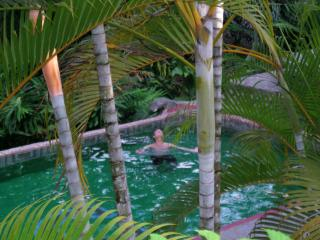 Casa Tango/ Artist Home in Tropical Paradise, Parque Nacional Manuel Antonio