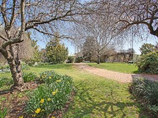 Stunning established gardens