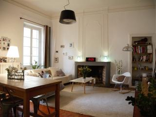 very nice apartment between city hall and Forum, Arles