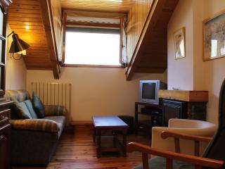 Apartamento para 6 personas, Benasque
