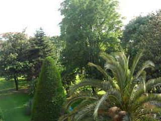 Parc  vue de la terrasse