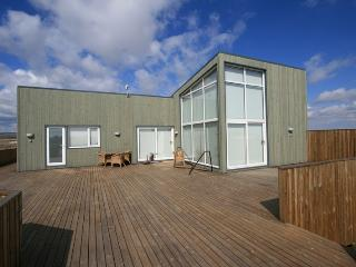 Countryside Villa - Close to The Golden Circle, Selfoss