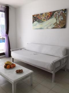 the sofa/bed of the living room