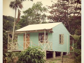 The Likkle Nature Queen : Caribbean Beach Cottage, Boston Bay