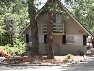 Pine Mountain Getaway~walk to beach, kid friendly, Groveland