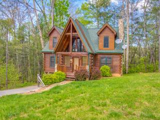 Luxury 3BR Gatlinburg Cabin - Sleeps 10. SPRING SPECIAL FROM $159!!!