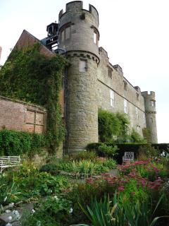 Spend a day wondering the fab grounds and woodland of Croft Castle