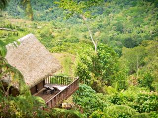 Unique Award Winning Pura Vida Ecolodge & Retreat, Ojochal