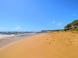 Kauai 100% OCEANFRONT