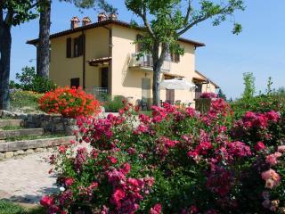 TULIPANO a San Gimignano con piscina