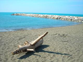 Holidays in the Etruscan Coast, Cecina