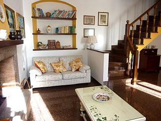 Ortensia Holiday Stone Farmhouse in Pietrasanta