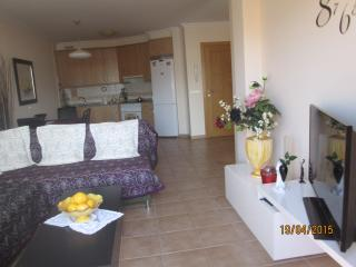 Rented a  apartment in the south of Tenerife, El Medano