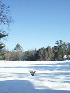 Back yard meadow in winter