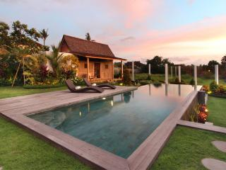 #C16 Central Seminyak 5mn Rice field view villa