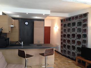 Grand studio rénové centre historique Avignon