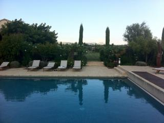 Spacious and Luxury Property South of France