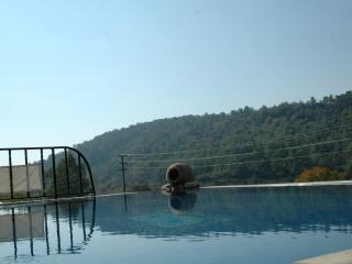 Traditional Turkish Villa with Private Pool, Akyaka
