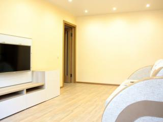 Spacious two room apartment close to downtown, Nischni Nowgorod