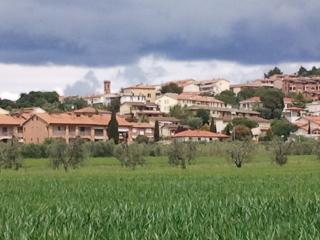 appartament fronte campagna ai bordi del paese, Riotorto