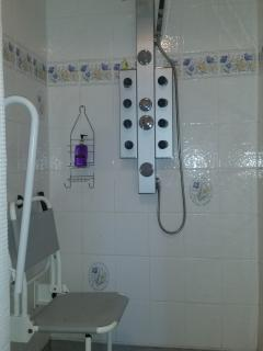 New Rain and Bodyjet Shower in Wetroom