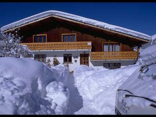 Chalet Rasera; spacious chalet for groups and families 50m from Pleney slopes