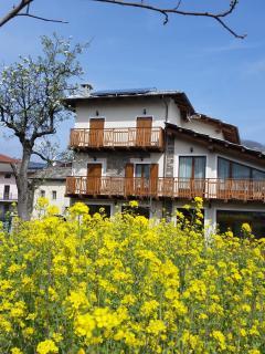 Casa Vacanze Orchidea dall'esterno