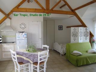 Ker Tropic studio au 1er etage avec jardin en RDC