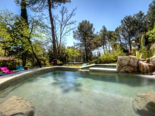 Beautiful stone villa - Roquefort les pins -