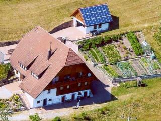 Vacation Apartment in Bad Rippoldsau-Schapbach - 753 sqft, max. 5 people (# 6211)