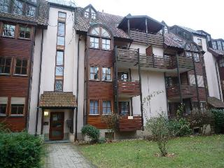 Vacation Apartment in Bad Krozingen - 323 sqft, 1 living room / bedroom, max. 2 People (# 7413)