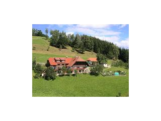 Vacation Apartment in Hausach - 753 sqft, 2 bedrooms, max. 4 People (# 7423)
