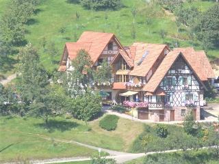 Guest Room in Seebach (Baden) -  (# 7432)