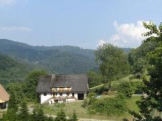 Vacation Apartment in Bad Peterstal-Griesbach - max. 4 People (# 7434)
