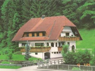 Vacation Apartment in Bad Rippoldsau-Schapbach - 743 sqft, 1 bedroom, max. 4 People (# 7518)