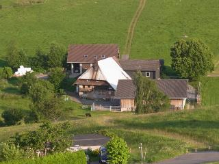 Vacation Apartment in Schonach im Schwarzwald - 721 sqft, 2 bedrooms, max. 6 persons (# 7519)
