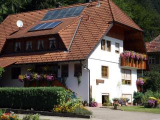 Vacation Apartment in Bad Rippoldsau-Schapbach (# 7537) ~ RA63960