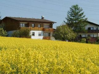 Vacation Apartment in Bad Bellingen - 560 sqft, 1 bedroom, max. 3 people (# 7669)