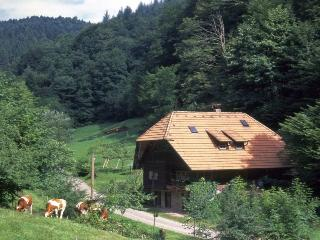 Vacation Apartment in Oberwolfach - 700 sqft, max. 4 People (# 7683)