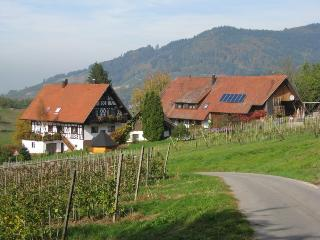 Vacation Apartment in Lautenbach - 1076 sqft, max. 6 persons (# 7685)