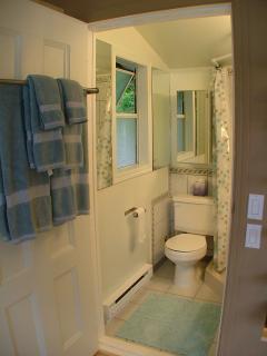 3 piece bathroom with rain shower head.